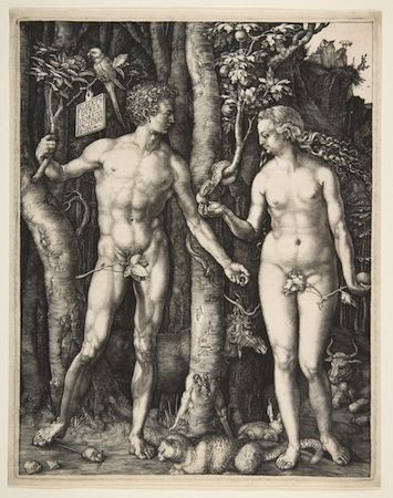 adam eve dürer
