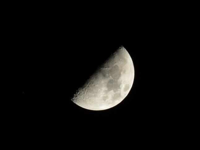 Moon - by Dekel Shapira.JPG